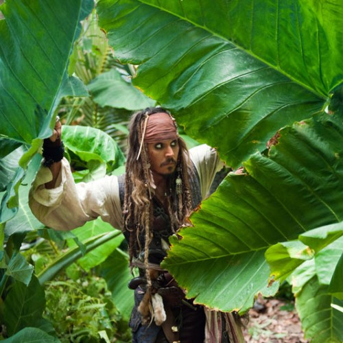 Pirates of the Caribbean: Dead Men Tell No Tale's set is underway