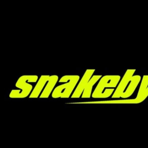 Snakebyte Debuts at CES 2011