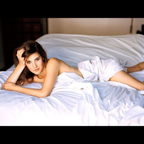 Cobie Smulders Will Be Wearing Catsuit in 'The Avengers'