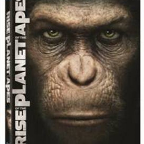 The Apes Rise on Blu-ray December 13th