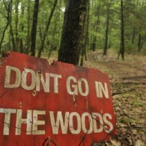 Don't Go In The Woods Review