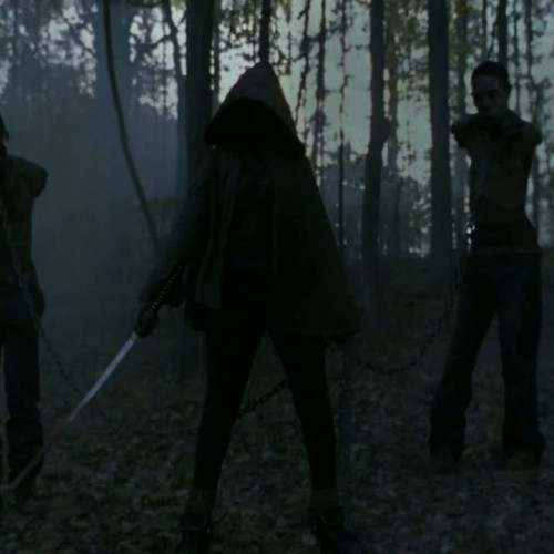 Who's that badass woman with the katana in the season 2 finale of The Walking Dead?