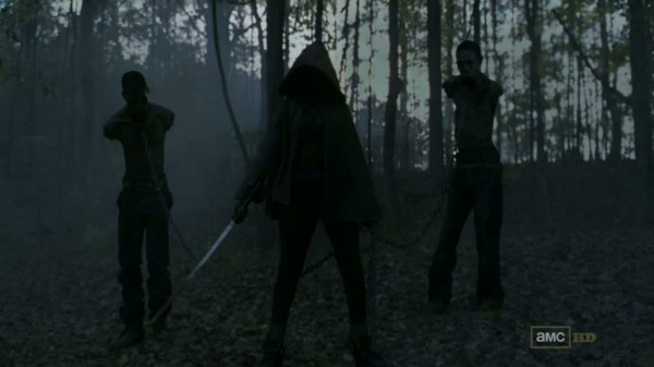 Michonne Walking Dead Danai Gurira 600x337 Who's that badass woman with the katana in the season 2 finale of The Walking Dead?