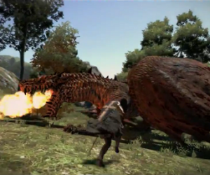 dragon's dogma drake fight