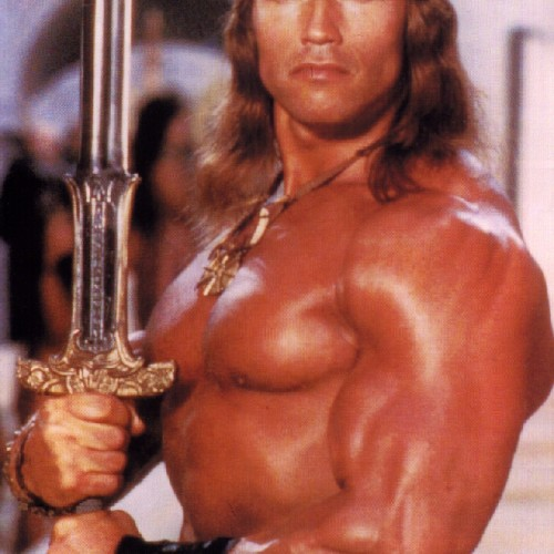 Arnold Schwarzenegger will be back as Conan the Barbarian