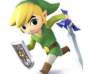 Toon Link Super Smash Bros Wii U 3DS pic 1