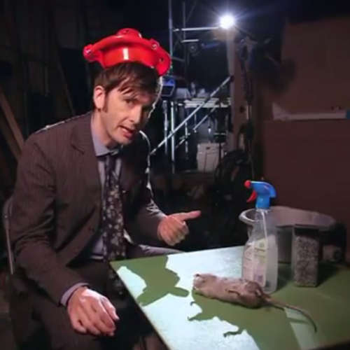 DW 50th: David Tennant introduces The Day of the Doctor