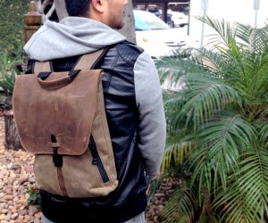 staad laptop backpack by waterfield