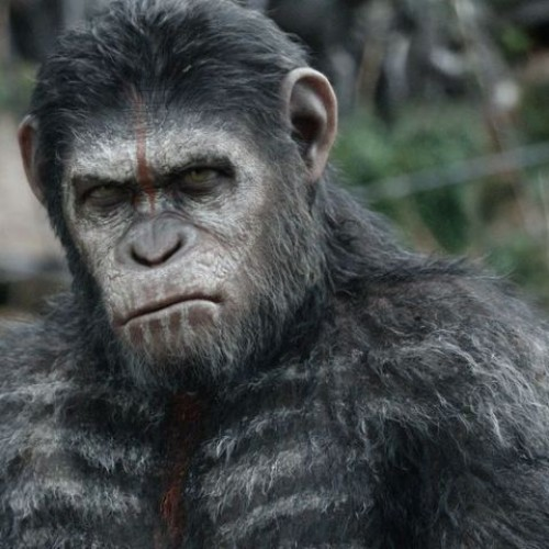 Apes together strong in the final trailer for Dawn of the Planet of the Apes