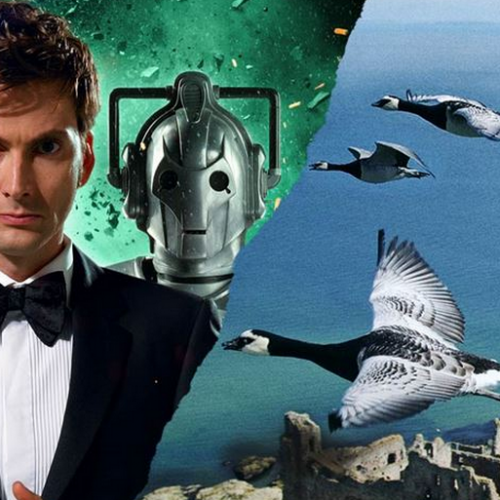 Fathom Events celebrates David Tennant with 'Doctor Who' and 'Wings'