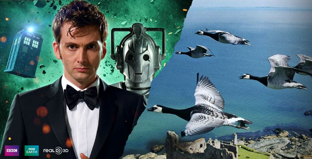 doctorwho wings tennant
