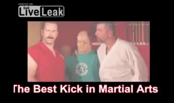 the best kick in martial arts from liveleak