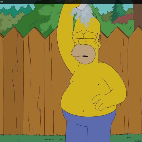 Homer Simpson does the Ice Bucket Challenge