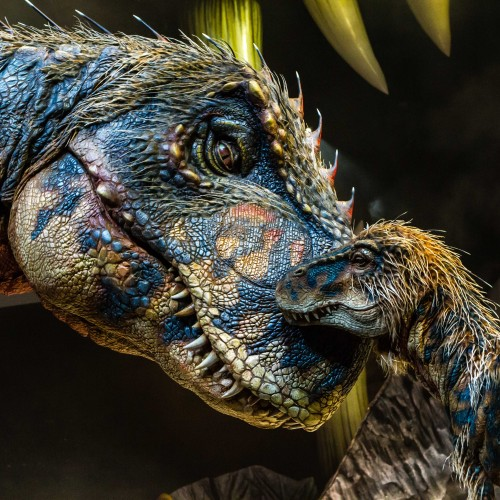 Walking with Dinosaurs arena spectacular is a MUST!