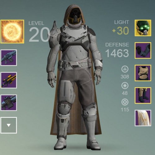 Destiny player becomes first to hit level 30