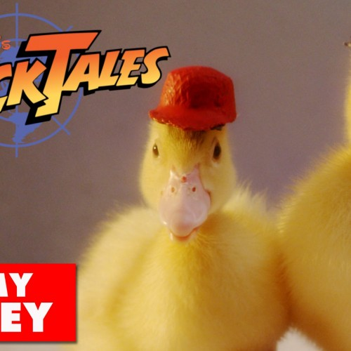 DuckTales theme song…now with real ducks
