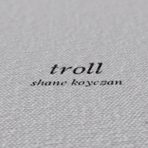 Beautiful message about the truth of Internet Trolls