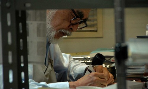 The Kingdom of Dreams and Madness (film review)