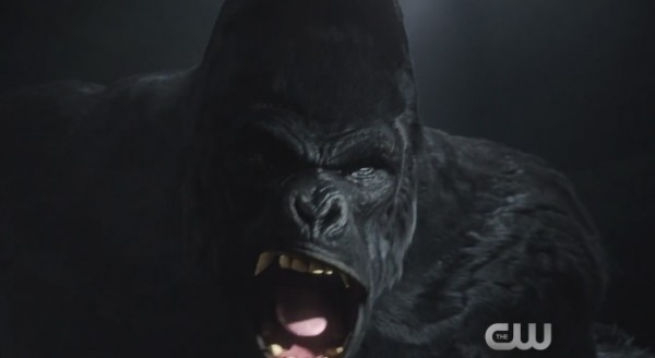 Gorilla Grodd the Flash