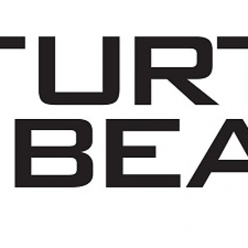 E3 2015: Turtle Beach is always a winning choice in audio