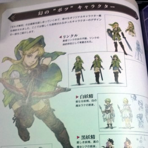 Female Link rumored to appear in Hyrule Warriors?