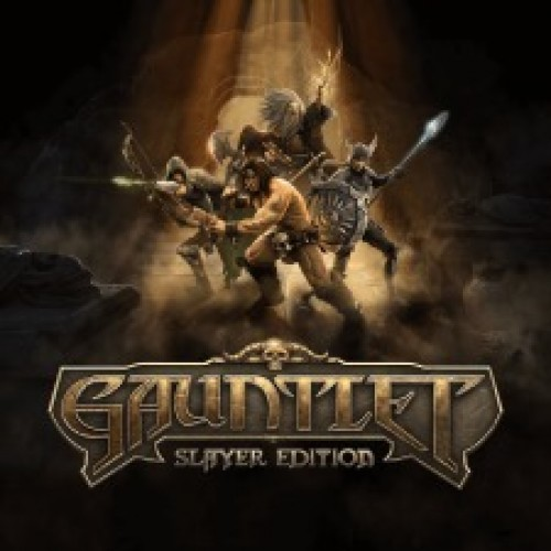Gauntlet Slayer Edition (PS4 Review)