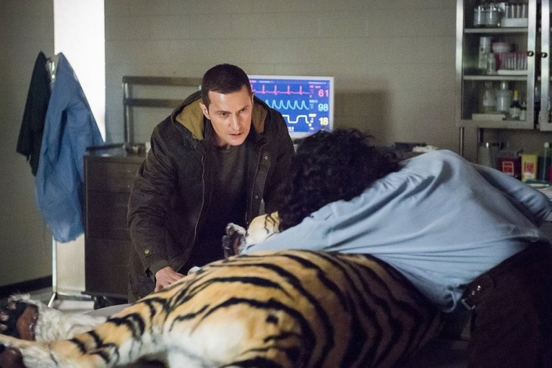 hannibal-tiger-woman-clothed-in-sun_article_story_large