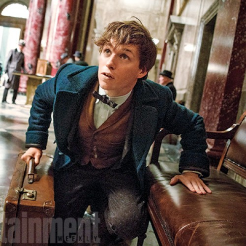 First look at Fantastic Beasts and Where To Find Them