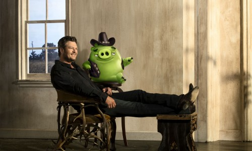 Blake Shelton set to voice country pig in The Angry Birds Movie