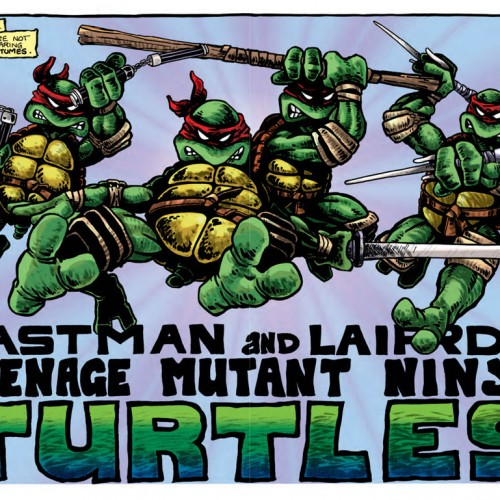 Unknown facts about the 'Teenage Mutant Ninja Turtles'
