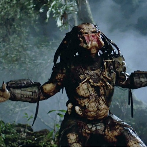 Benicio Del Toro is going to be in the new Predator movie? AWESOME!