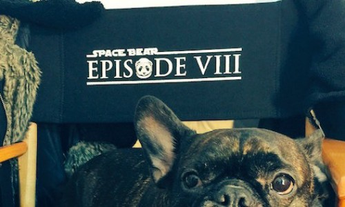 Star Wars: Episode VIII name will be…