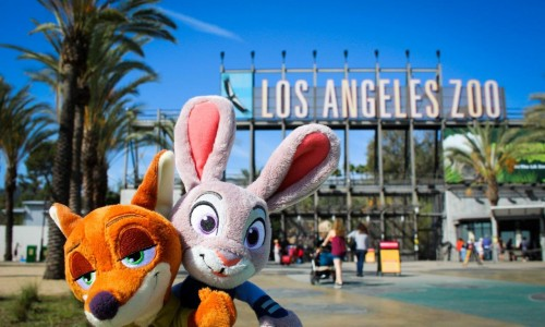 The streets of Los Angeles are running wild with 'Zootopia'! (EXCLUSIVE)