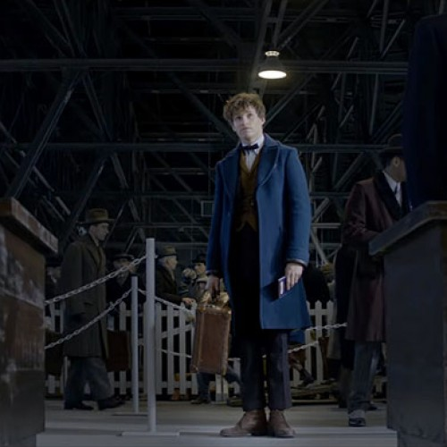 Learn about Newt Scamander with this 'Fantastic Beasts' featurette