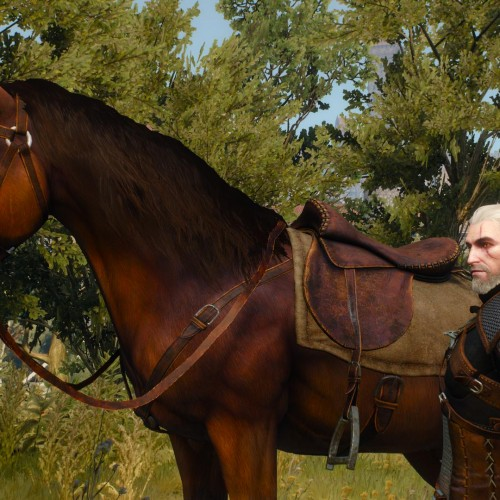New Witcher 3 DLC to make Roach a talking horse
