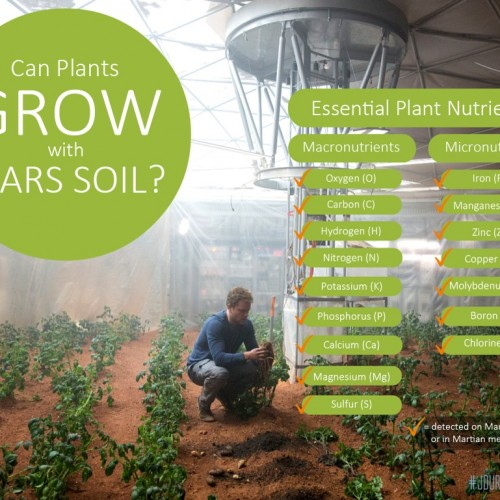 Crops have been successfully planted in simulated Martian soil