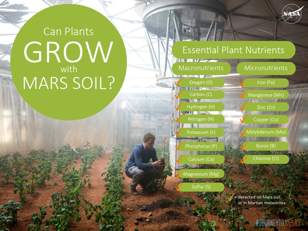Crops have been successfully planted in simulated martian for Things found in soil
