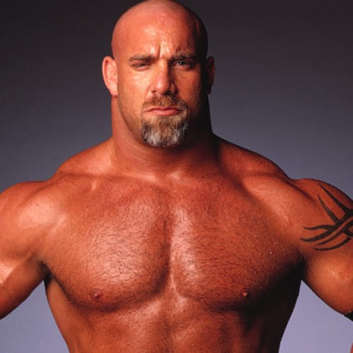 Who's next? Goldberg to be featured in WWE 2k17