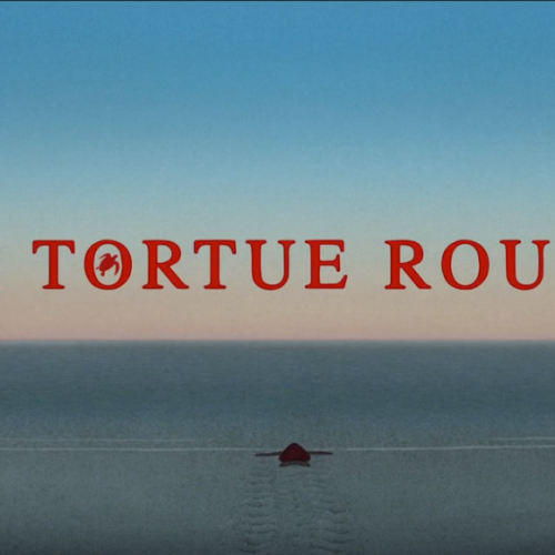 Studio Ghibli collaborates with animator Michael Dudok de Wit on 'The Red Turtle'