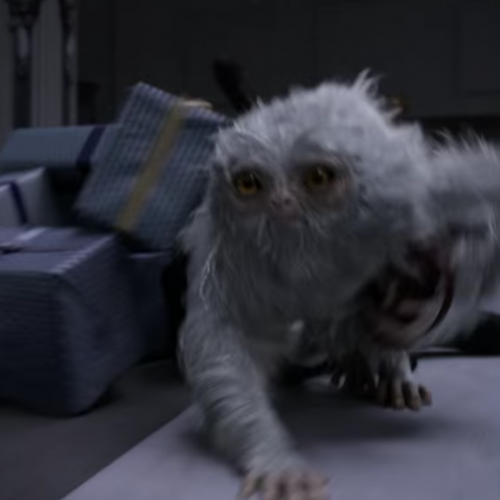 Magical creatures identified in new Fantastic Beasts and Where to Find Them trailer