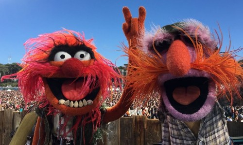 The Muppets' Dr. Teeth and the Electric Mayhem performed live in concert?