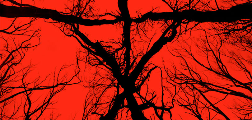 blair_witch_poster_header