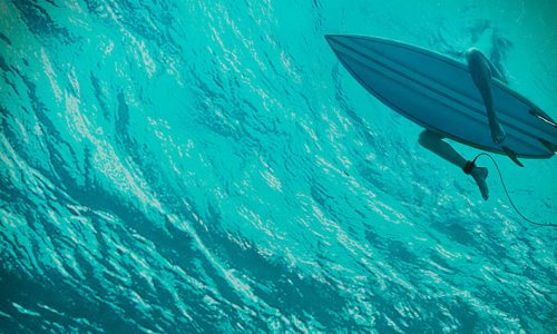 The Shallows – Blu-ray Review