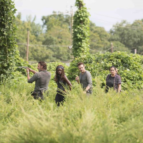 Rick and the gang plan to take down Negan in new images and synopsis for The Walking Dead