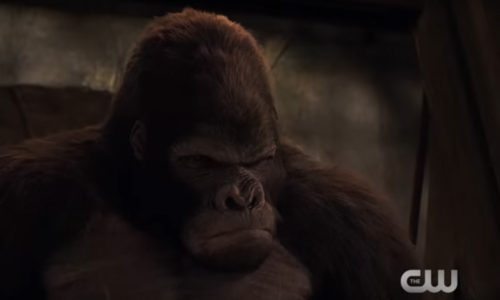 See more Grodd in extended The Flash's 'Attack on Gorilla City' trailer