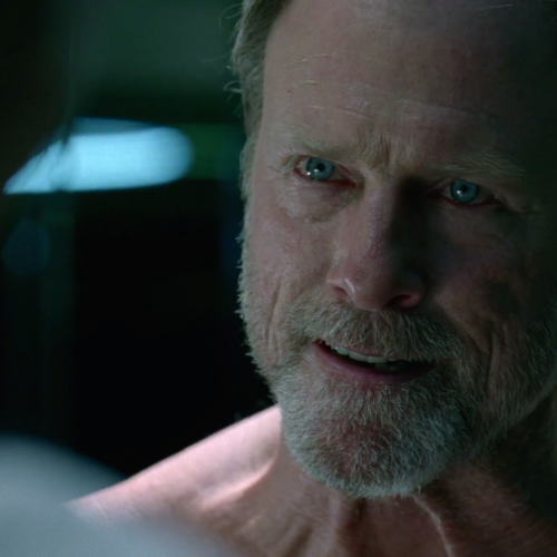 Westworld's Louis Herthum promoted to series regular