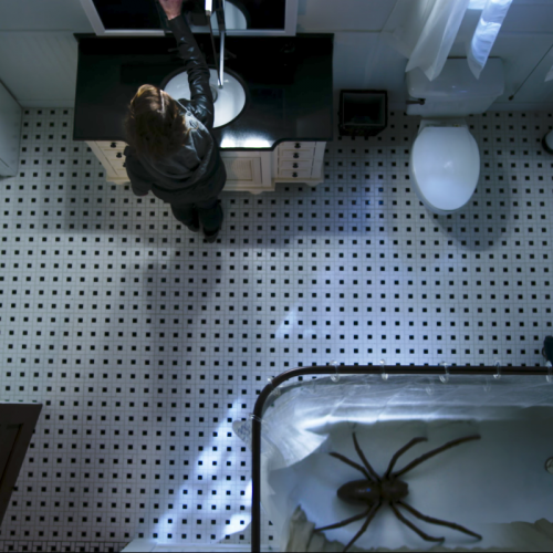 The fear is very real in trailer for upcoming horror film 'Itsy Bitsy'