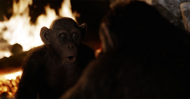 War for the Planet of the Apes - Steve Zahn