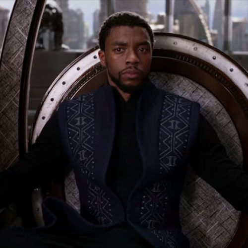 Long live in the king in the new Black Panther TV spot