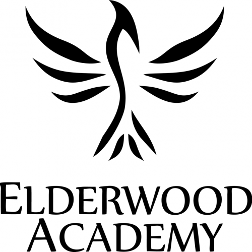 Elderwood Academy brings the wood to tabletop gaming accessories
